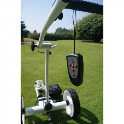 Carro Electrico Ecaddy X2R...